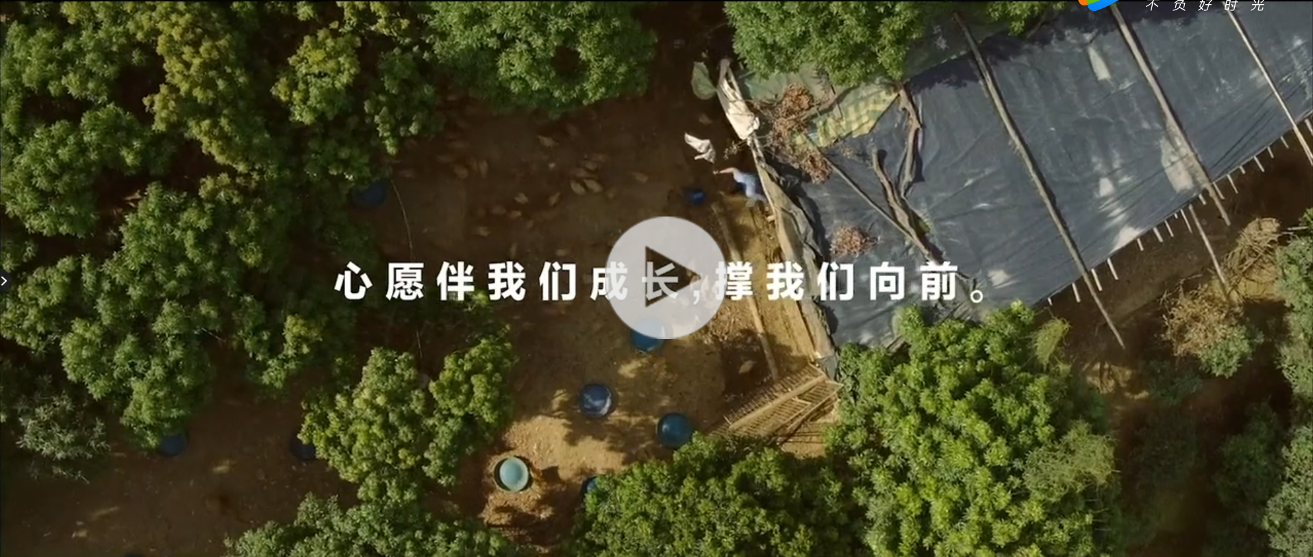 xingyuan bofang